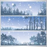 Set of winter forest banners Stock Photography
