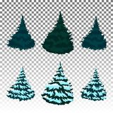 Set: Winter forest. Christmas trees in the snow. Eps 10 Vector. Firs in the snow. A set of Christmas trees with snow. Isolated. Festive decor. Drawing Royalty Free Stock Images