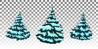 Set: Winter forest. Christmas trees in the snow. Eps 10 Vector. Firs in the snow. A set of Christmas trees with snow. Isolated. Festive decor. Drawing Royalty Free Stock Photos