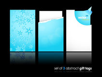 Set of winter gift cards with reflection. Royalty Free Stock Photography