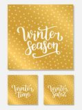 Set Winter sale, season and time lettering design. Vector illustration, gold background. Happy New Year and Merry Christmas Season. Al Sale. Holiday time Stock Illustration