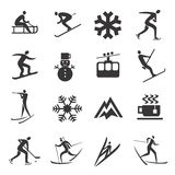 Set of winter sport icons Royalty Free Stock Photos