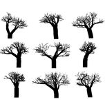 Set of winter trees Royalty Free Stock Photography