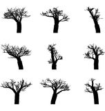 Set of winter trees Stock Photography