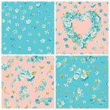 Set wiosny okwitnięcie Kwitnie tła Fotografia Stock
