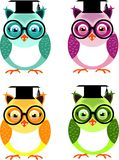 Set of wise owls. Set of four clever owls Stock Photos