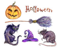 Set of witchs hat, pumpkin, cat, rat Halloween Stock Photography