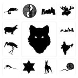 Set of wolf face outline on white background, yarn ball, doberman, star david, mosquito, india, stork, louisiana hippo icons Royalty Free Stock Photo