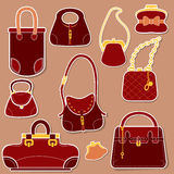 Set of woman bags and handbags. Stock Photos