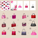 Set with woman' bags. For your design Royalty Free Stock Image