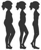 A set of woman body transformation Stock Photography