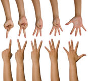 Set Of Woman Counting Hands Royalty Free Stock Photography