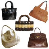 Set of Woman`s Hand bags Stock Photo