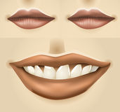 Set of woman's lips Royalty Free Stock Photo