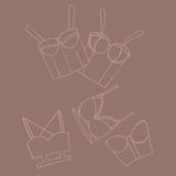 Set of women bra, doodle underwear Royalty Free Stock Image