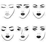 Set of women`s faces. Set of fashionable stylized women`s faces with distinctive eyes and lips, vector illustration as face care Royalty Free Illustration