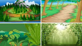 Set of wood scenes. Illustration royalty free illustration