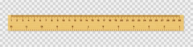 Set of wooden rulers 15, 20 and 30 centimeters with shadows isolated on white. Measuring tool. School supplies. Vector stock illustration vector illustration