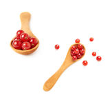 Set of Wooden spoon filled with Red Currant  over white background Stock Photos