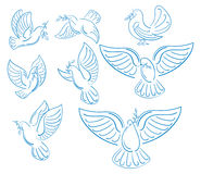 A set of world pigeons with a branch of an olive. Collection of flying white doves. Logos with stylized birds. A symbol vector illustration