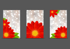 Set of 240 x 400 size banners Royalty Free Stock Photography