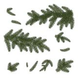 Set: Christmas trees, isolated. Branches of Christmas tree. Stock Photography