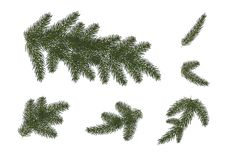Set: Christmas trees, . Branches of Christmas tree.vecto. Set: Xmas tree branches.  Christmas and Happy New Year décor .  without a shadow. Fir tree branches Royalty Free Stock Photography