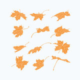 Set of yellow leaves design elements. Vector set of  silhouettes of yellow maple leaves. Whimsical shapes of leaves on the light background.  Design elements Stock Image