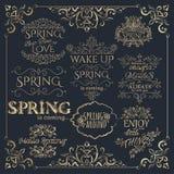 Set złoci nagłówki z wiosen wycena Obrazy Royalty Free