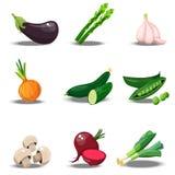 Set z świeżymi healty warzywami Zdjęcie Stock