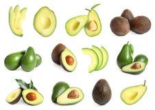 Set z całymi i pokrojonymi avocados royalty ilustracja