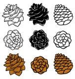 Set z graficznymi pinecones na białym tle ilustracja wektor