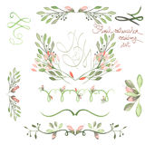 Set z ramą graniczy, kwieciści dekoracyjni ornamenty z akwarelą kwitnie, liście i gałąź dla poślubiać Obrazy Stock