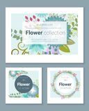 Set zaproszenie karty z kolorowymi kwiatami 1 Obrazy Royalty Free