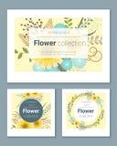 Set zaproszenie karty z kolorowymi kwiatami 3 Zdjęcia Royalty Free