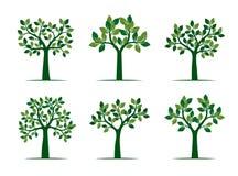 Set Zieleni wiosen drzewa również zwrócić corel ilustracji wektora ilustracja wektor