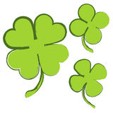 Set 3 zielonej koniczyny na białym tle Fotografia Royalty Free