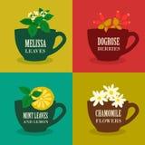Set Ziołowe herbaty wektor Zdjęcie Stock