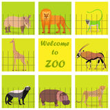 Set with Zoo Animals. Placed Behind the Fence and on the Square Background. Welcoming Text on the Square in the Center. Vector EPS 10 Royalty Free Stock Photo