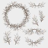 Set Zweige stock abbildung