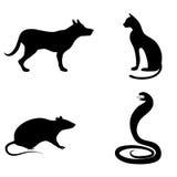 Set zwierzęce sylwetki Pies, kot, kobra lub wąż, a Zdjęcia Royalty Free