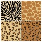 Set Zwierzęcy wzory Zdjęcia Royalty Free