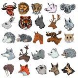 Set zwierzęta Fotografia Royalty Free