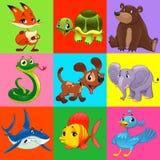 Set zwierzęta z tłem Obrazy Royalty Free