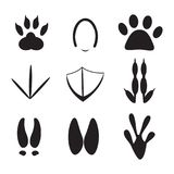 Set zwierzę odcisk stopy Obraz Stock