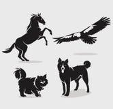 Set zwierzęta Fotografia Stock