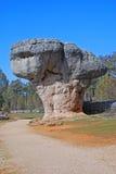 Seta de piedra en ciudad encantada Foto de archivo