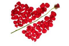 Seta do Cupid em uma forma vermelha do coração das pétalas cor-de-rosa foto de stock royalty free