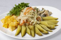 seta, pepinos conservados en vinagre, patata y huevos con las aceitunas y el limón, comida fría imagen de archivo libre de regalías