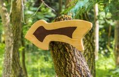Seta-ponteiro incomum de madeira Fotos de Stock Royalty Free
